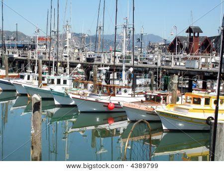 Fishing Boats Fisherman's Wharf, San Francisco, Ca