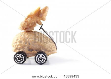 Photo of You drive me nuts!
