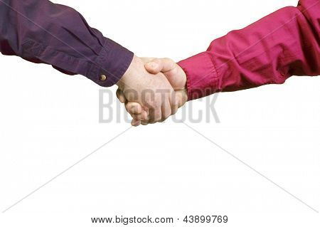 Handshake between two men over a white background