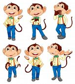 pic of jumpsuits  - Illustration of the different positions of a monkey on a white background - JPG