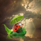 stock photo of rainy season  - Little traveler on the funny boat - JPG