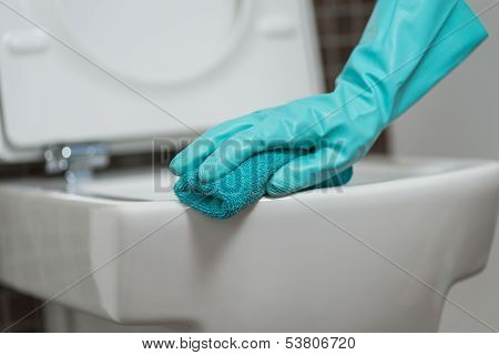Person Cleaning The Toilet Seat In Rubber Gloves