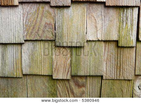Weathered Cedar Shake Texture