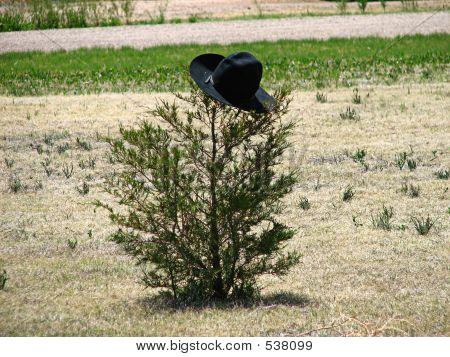 Cowboy Tree
