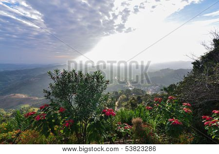 Beautiful Scene Of Red Flower And Mountain