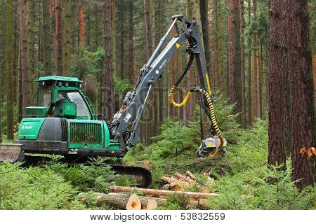 PILSEN CZECH REPUBLIC - NOVEMBER 11: unidentified lumberjack with modern harvestor working in a forest on November 11, 2013. Forestry is Czech's traditional industry with a very long history.