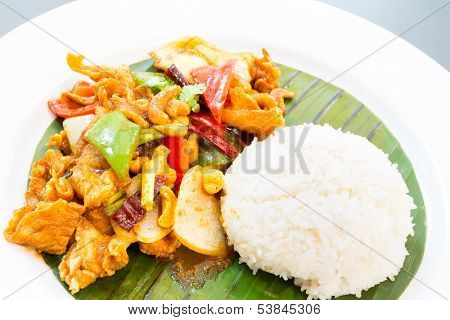 Stir fried chicken with cashew and jasmine rice