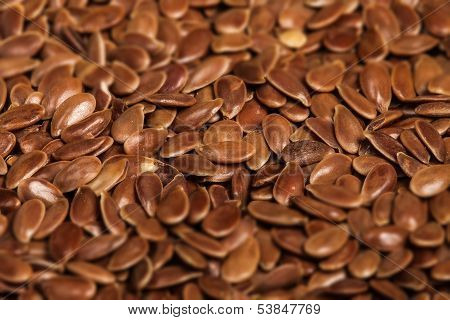 Linseed Background, Flax Seeds