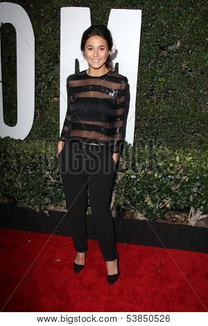 LOS ANGELES - NOV 11:  Emmanuelle Chriqui at the