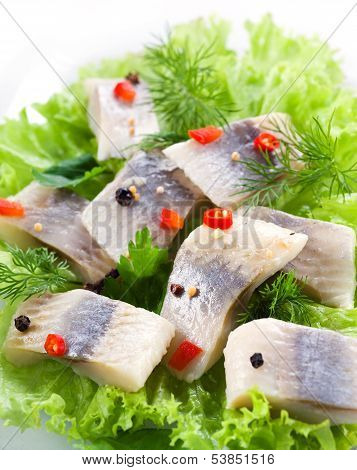 Herring Fillet With Herbs And Spice