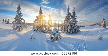 Frosty morning in the mountains. Panorama of winter mountains. Ukraine, Carpathians