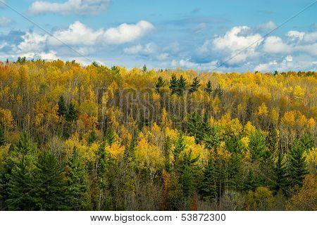 Ontonagon River Valley, Autumn
