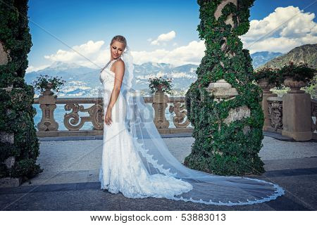 Young beautiful bride with a veil