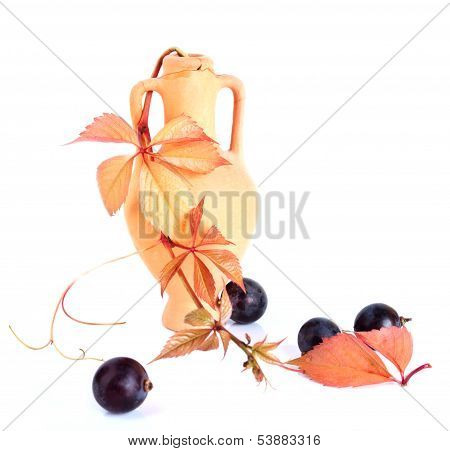 Wine Amphora With The Vine Branch And Grapes