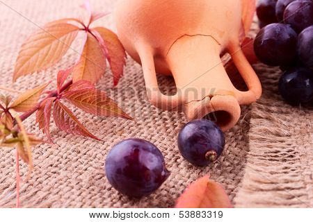 Vintage Still Life With The Amphora, Grape And Vine