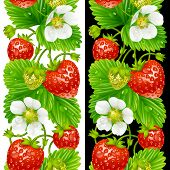 stock photo of strawberry plant  - Vector strawberry seamless vertical pattern isolated on background - JPG