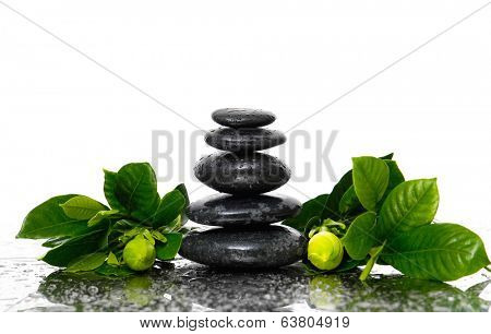 Spa Background with gardenia bud flowers