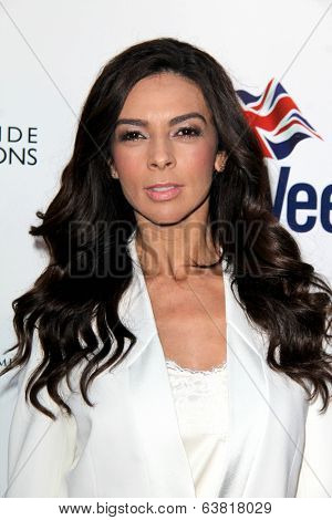 LOS ANGELES - APR 22:  Terri Seymour at the 8th Annual BritWeek Launch Party at The British Residence on April 22, 2014 in Los Angeles, CA