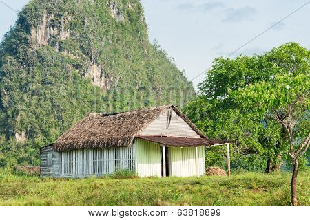 Rural scene with a rustic house known as bohio at the Vinales Valley in Cuba, worldwide known for its natural beauty and the fame of its tobacco