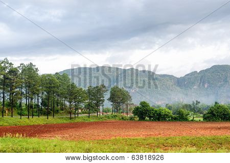 Mountains at the Vinales valley in Cuba with agriculture fields in the foreground
