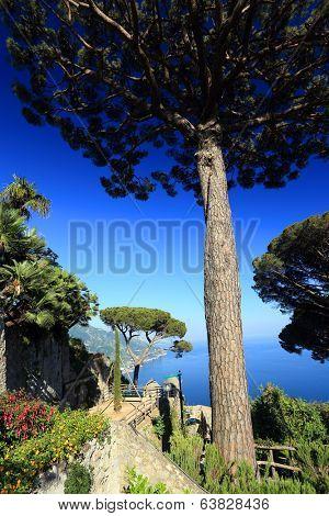 Park in Ravello, Amafi Coast, Italy, Europe