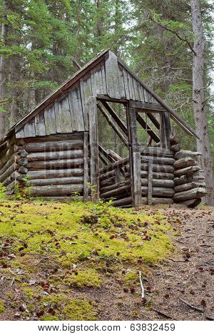 Rotting Old Traditional Yukon Taiga Log Cabin Ruin