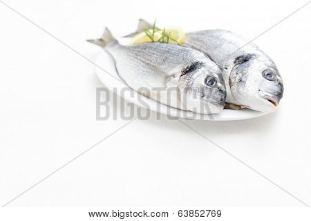two fresh dorada fish - food and drink