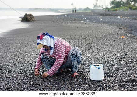 BALI - APRIL 11, 2014: A woman collects smoothen pebbles at the beach in Bali, Indonesia. Stones rounded by the sand and the sea has industrial value for use in construction and aquarium decorations.