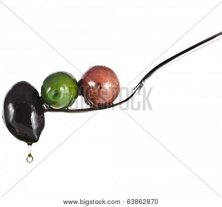 fork with colored olives and herb spice with copy space isolated on a white background