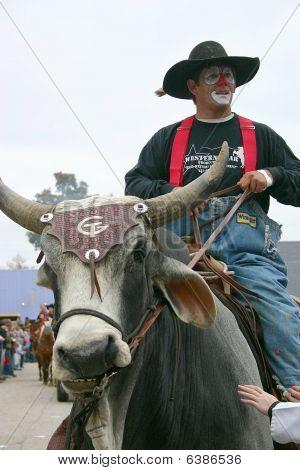 Brahma Bull Riding