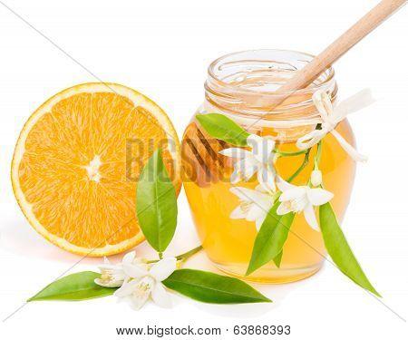 Honey And Orange