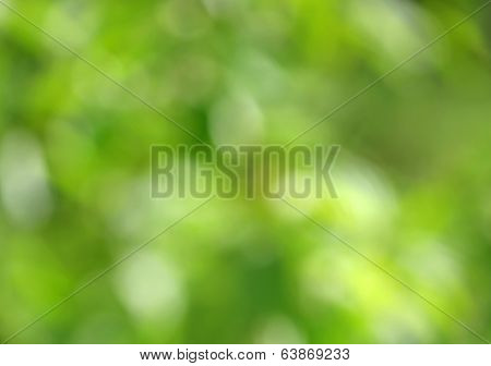 Background abstract nature blur