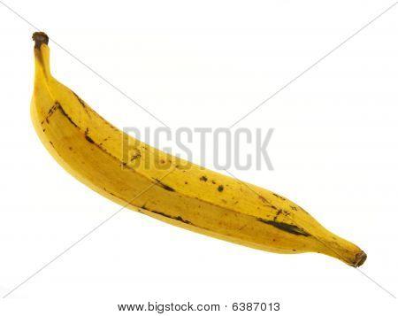 Ripe Plantain banana