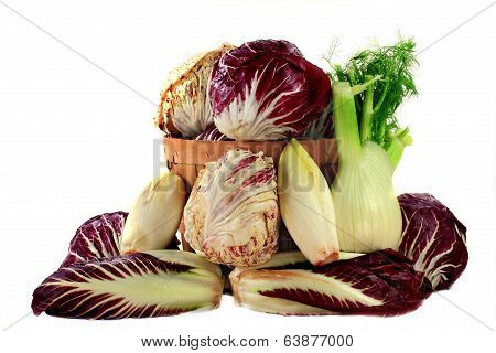 Fennel And Radicchio Ingredients For Gourmet Salad