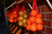 pic of israel people  - Fresh oranges and fruit in the Jaffa Market in Tel Aviv Israel - JPG