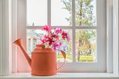 picture of fragrance  - Pot with a flower on the windowsill country house - JPG