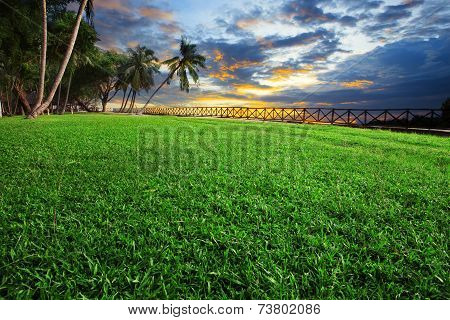 Beautiful Landscape Of Green Grass Field Park Against Dusky Sky On Evening