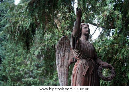 Salzburg Angel
