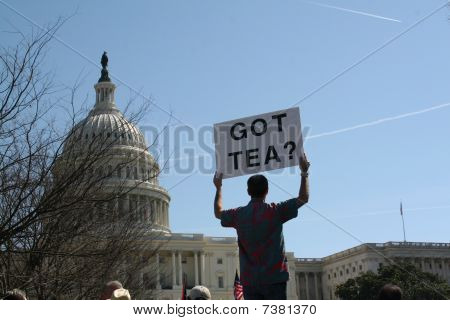 Tea Party Demonstration at U.S. Capitol