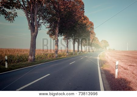 Autumn Landscape With Countryside Road