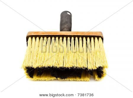 Yellow Paintbrush
