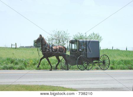 amish buggy lancaster pa