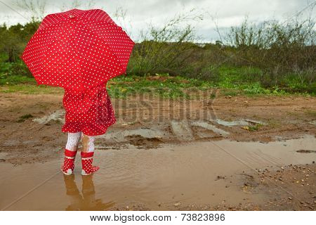 One Dotted Umbrella