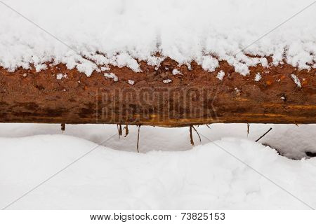 Closeup Wooden Wood Log Covered With Snow On Winter