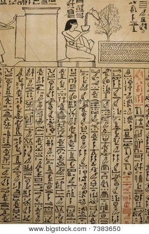 Print of ancient papyrus with hieroglyphs