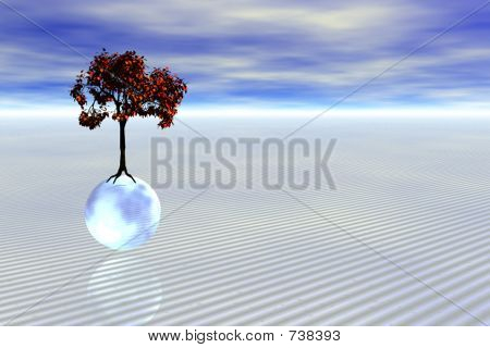Tree on a ball