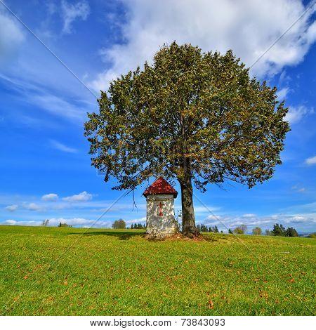 Landscape With Roadside Shrine. Poland.