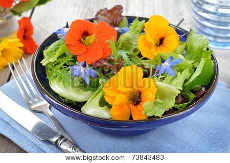 Salad With Edible Flowers Nasturtium and Borage.