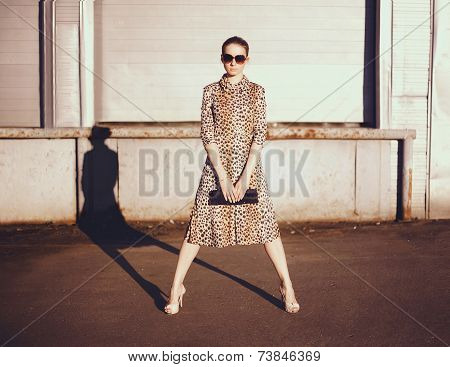 Stylish Woman In A Leopard Dress, Glasses And Bag In The Ghetto Evening