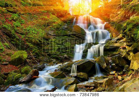 Nice waterfall in autumn fores